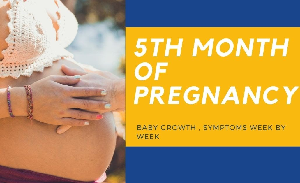 5th Month Pregnancy | Baby Growth Week by Week